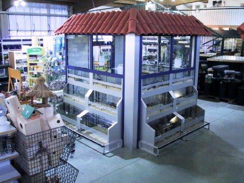 Roditori bionatura impianti arredamenti negozi animali for Arredamenti per acquari