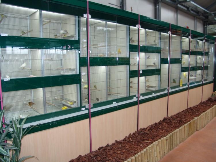 Uccelli bionatura impianti arredamenti negozi animali for Arredamenti per acquari